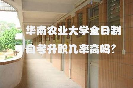华南农业大学全日制自考升职几率高吗?